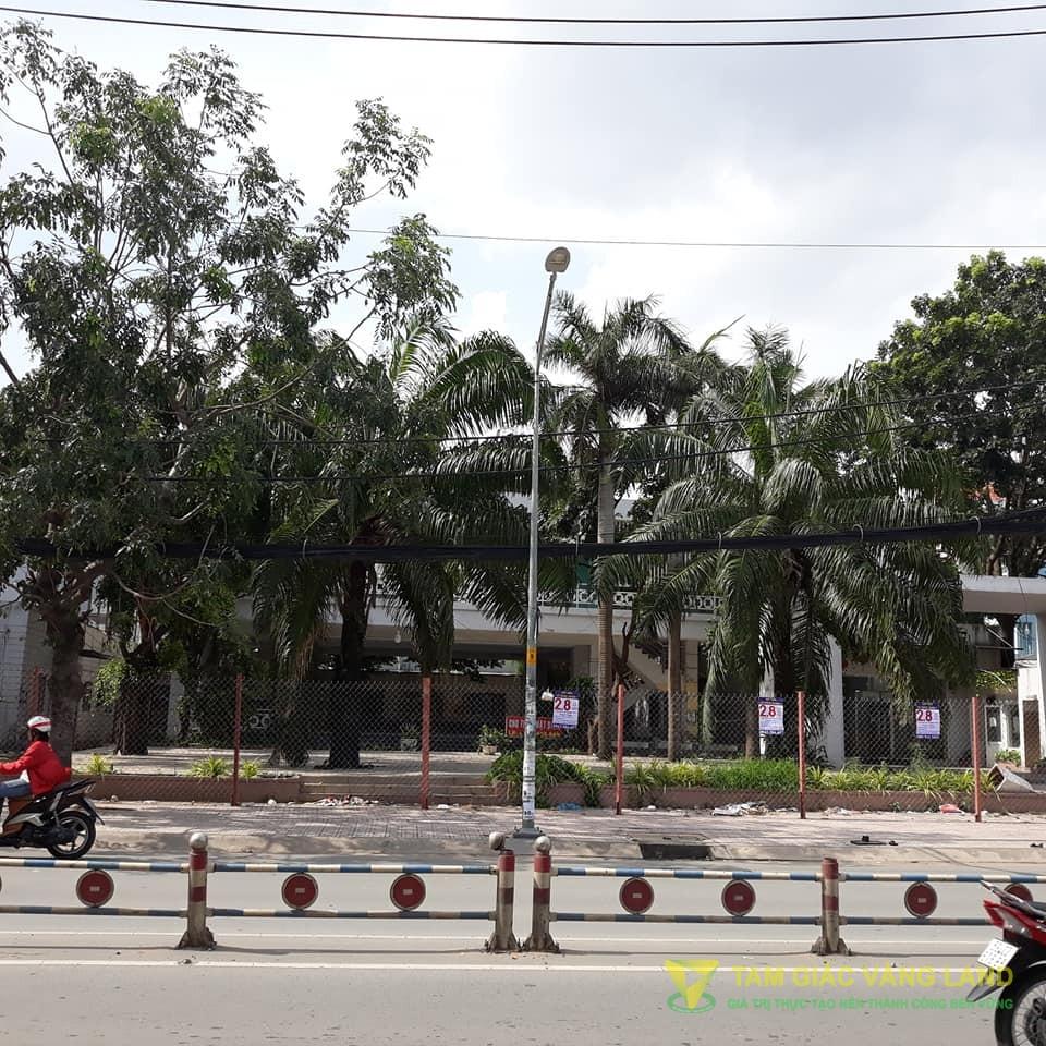 Cho thuê mặt bằng 2000m2 Nguyễn Thị Thập, Phường Bình Thuận Quân 7